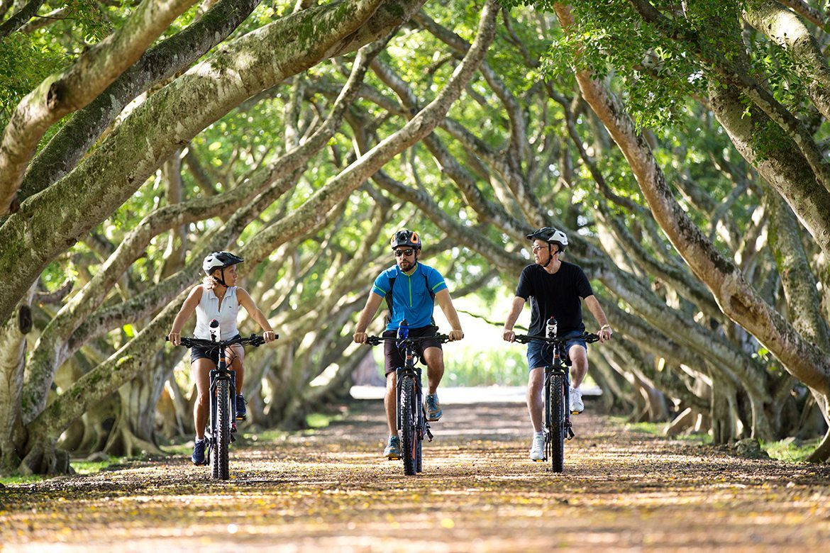 Electro bike ride immersion in the heart of Mauritius