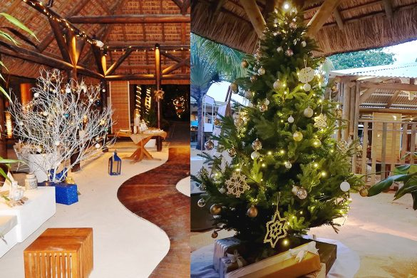 Celebrating the festive season in the tropics